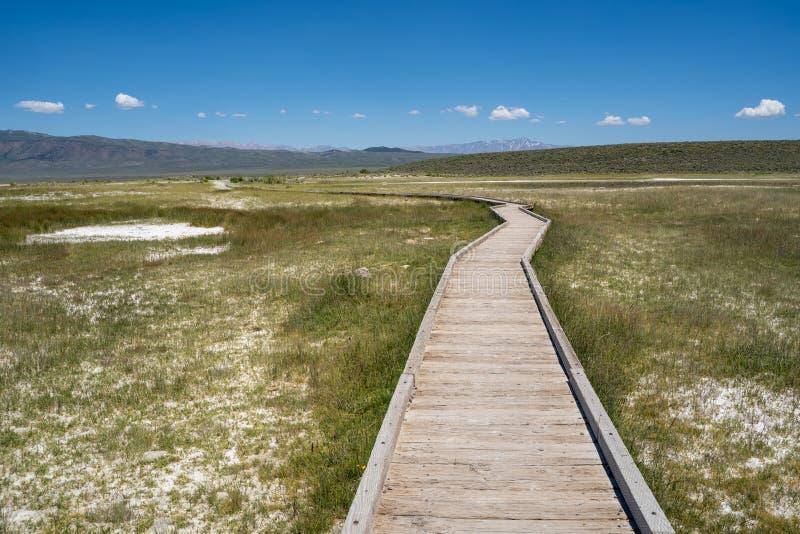 Podwyższony boardwalk prowadzi Dzikie Willys Gorące wiosny w Mamutowych jeziorach Kalifornia fotografia stock