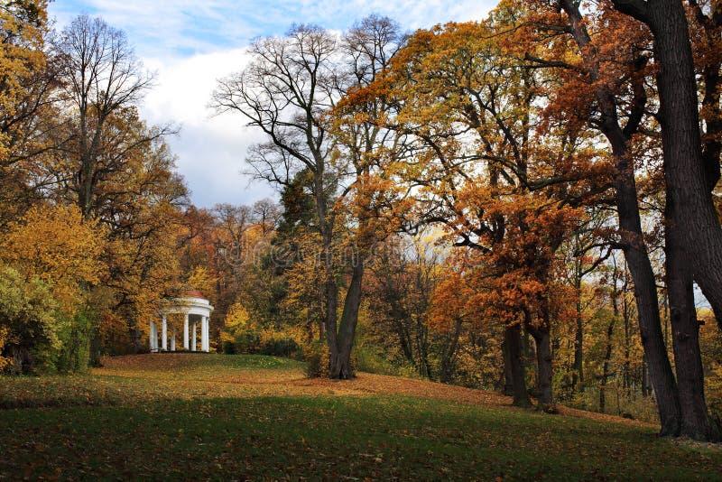 podzim v parku anglick m стоковое фото rf