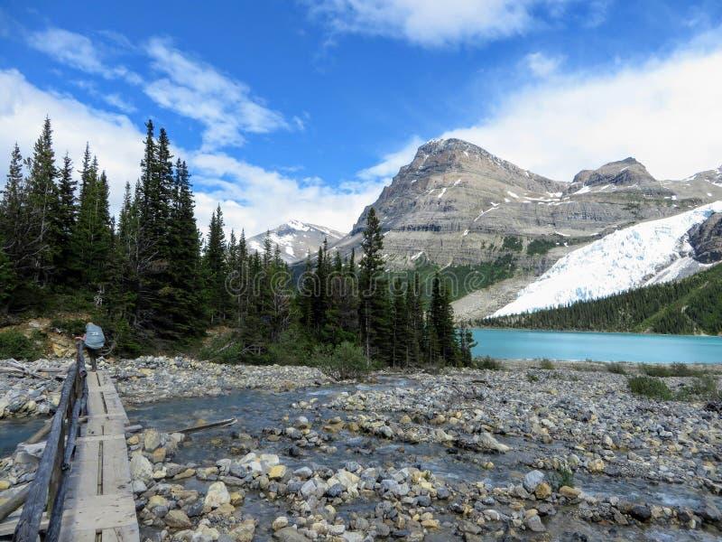 Podziwiać widok Góra lodowa jezioro i góry Robson lodowiec fotografia stock