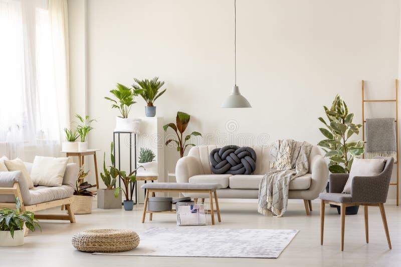 Poef op deken en installaties in ruim woonkamerbinnenland met gre royalty-vrije stock foto's
