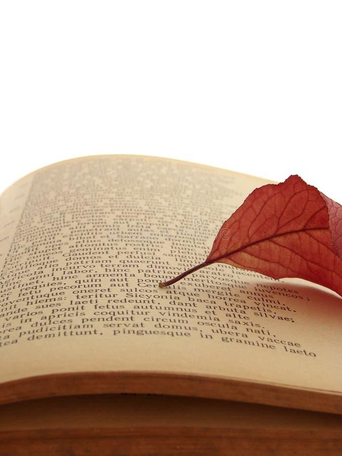 Poema antiguo 3 fotografía de archivo libre de regalías