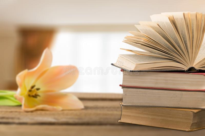 Poetry royalty free stock images