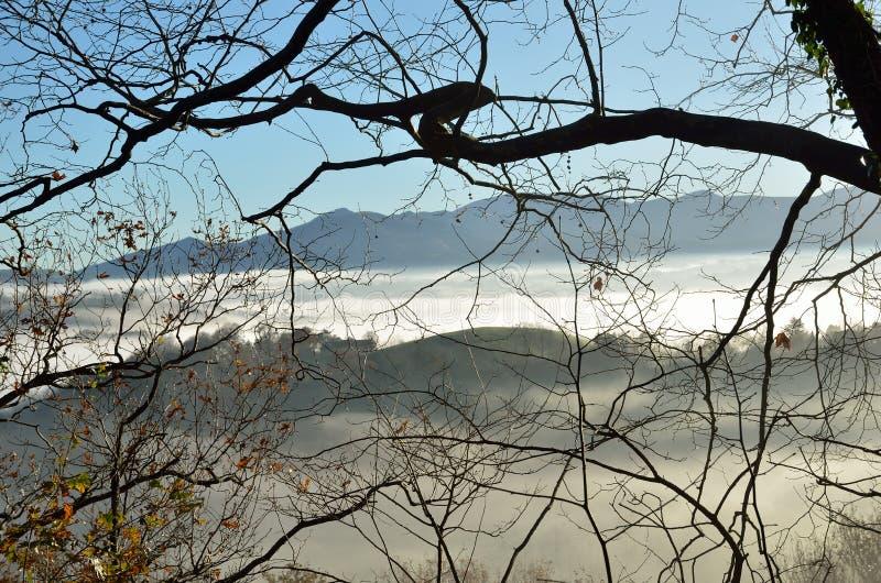 Pogórza n mgła, pays basque obraz royalty free