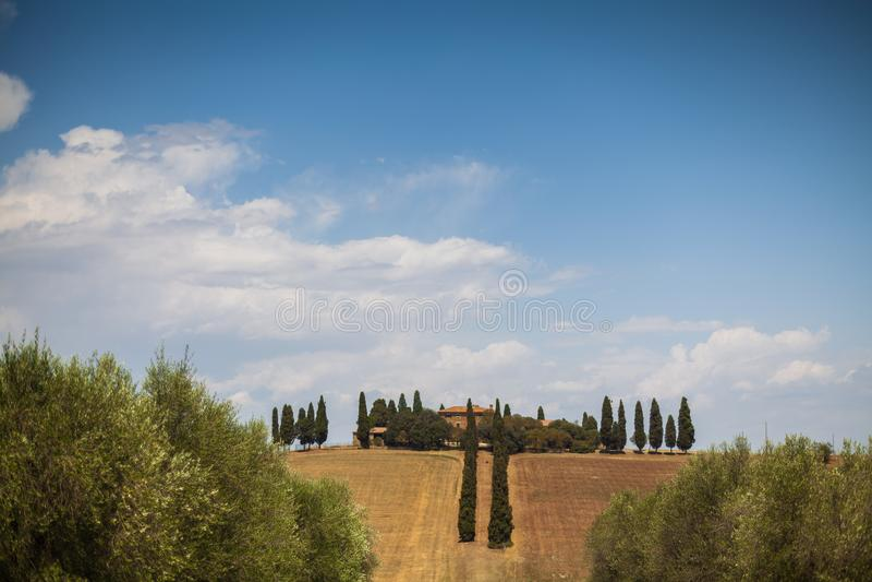 Poggio Mangiuoli看法在奥尔恰谷,托斯卡纳,意大利 库存照片