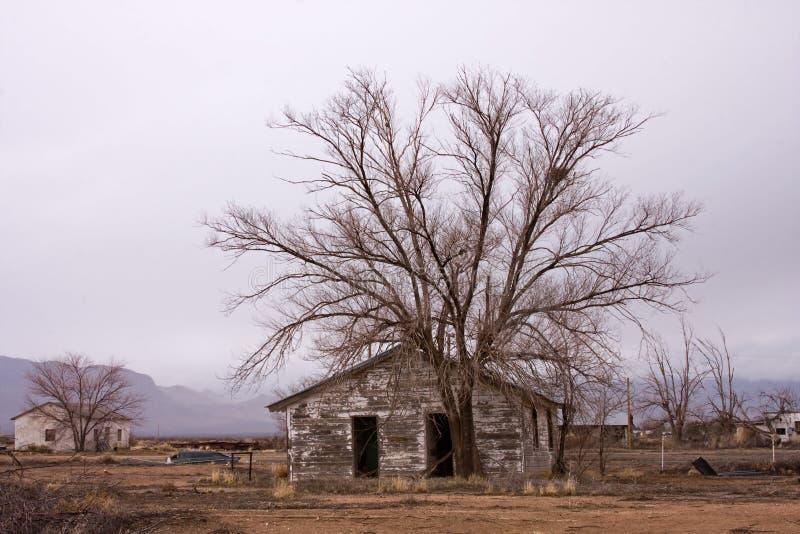 Download Pogoda sztormowa obraz stock. Obraz złożonej z drzewo - 13173573