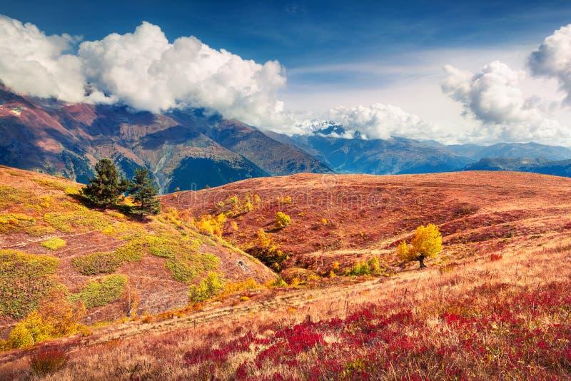 Pogodna jesieni scena w Górnym Svaneti, Koruldi jeziora lokacje, Gruzja, Europa fotografia stock