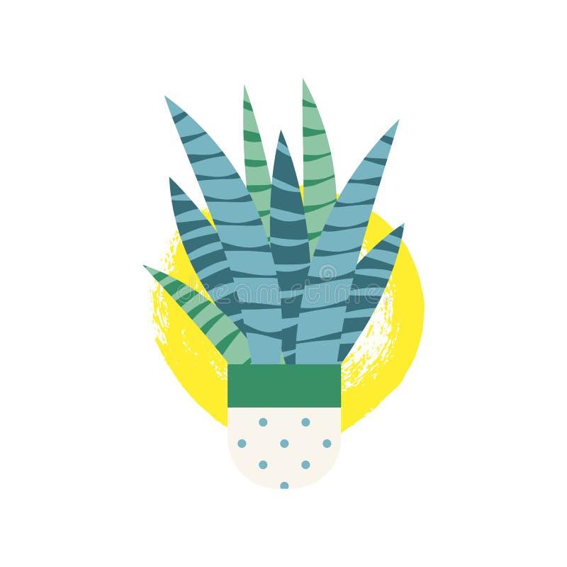Pogodna karta z Tłustoszowatym kwiatem w mieszkanie stylu odizolowywającym na bielu Domowy roślina logo dla tshirt, tkanina, wiad ilustracja wektor