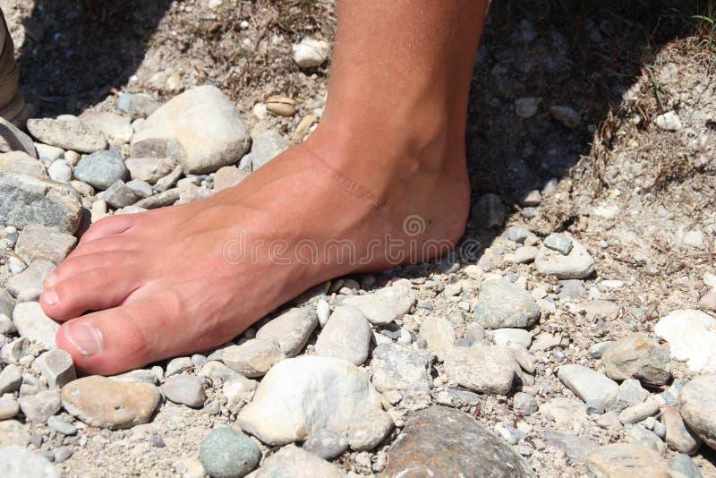 Pogodna stopa zdjęcie stock