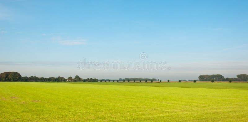 pogodne kolorowe krajobrazowe holandie obraz stock