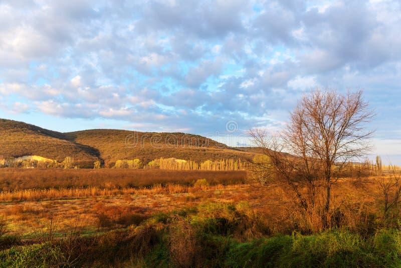 Pogodny ranku krajobraz zdjęcia stock