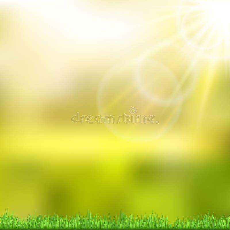 Pogodny tło z zieloną naturą wektor ilustracji