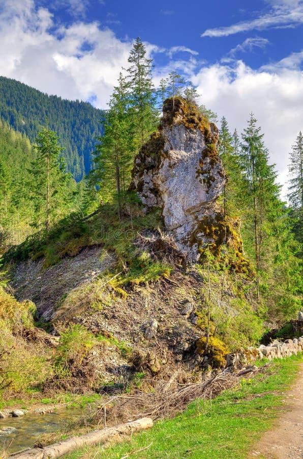 Pogodny wiosny góry krajobraz fotografia royalty free