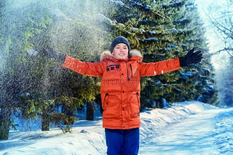 Pogodny zima dzień zdjęcie stock