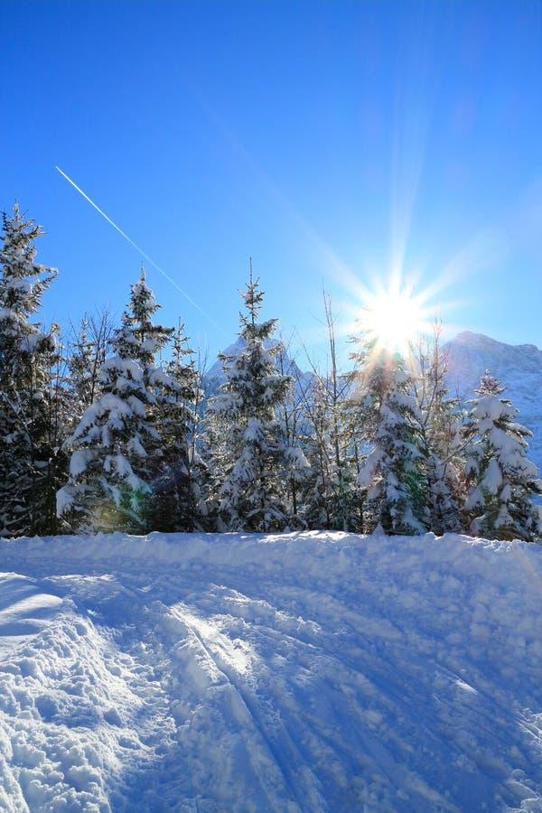 Download Pogodny zima dzień zdjęcie stock. Obraz złożonej z christmas - 106907952