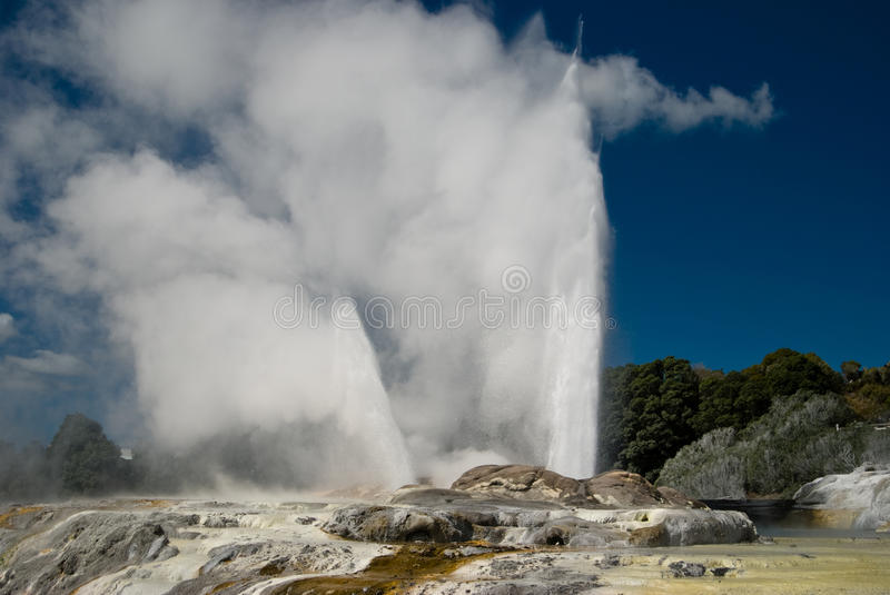 Pohutu Geyser. The biggest geyser in New Zealand royalty free stock images