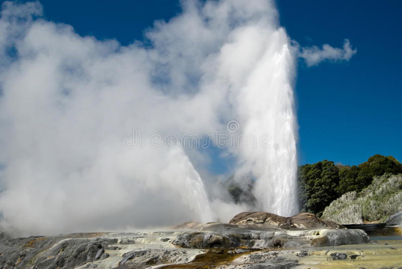 Pohutu Geyser. Travel destination in central North Island of New Zealand stock images