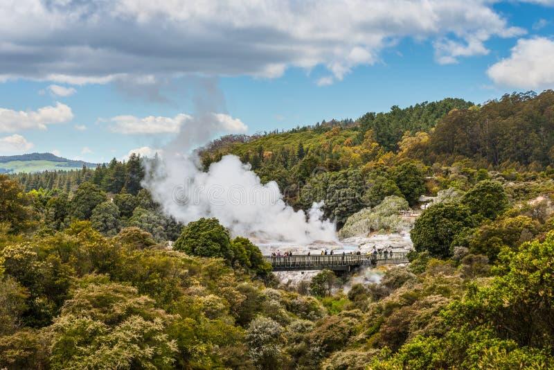 Pohutu Geyser in Rotorua New Zealand royalty free stock photos