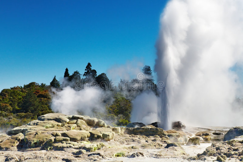 pohutu neuf la zélande de geyser photo stock