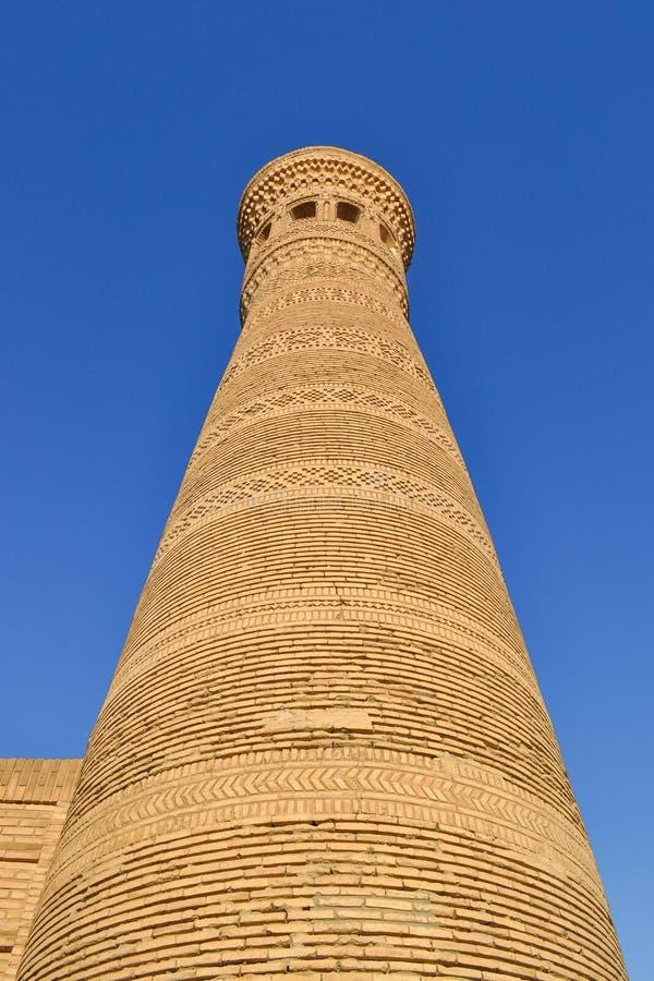 Poi卡尔扬尖塔位于布哈拉的历史部分 库存图片