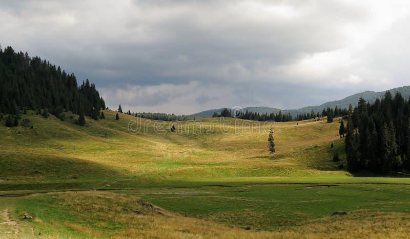Poiana Ponor - Tal in Bihor-carst Bergen in Apuseni in Rumänien lizenzfreie stockbilder