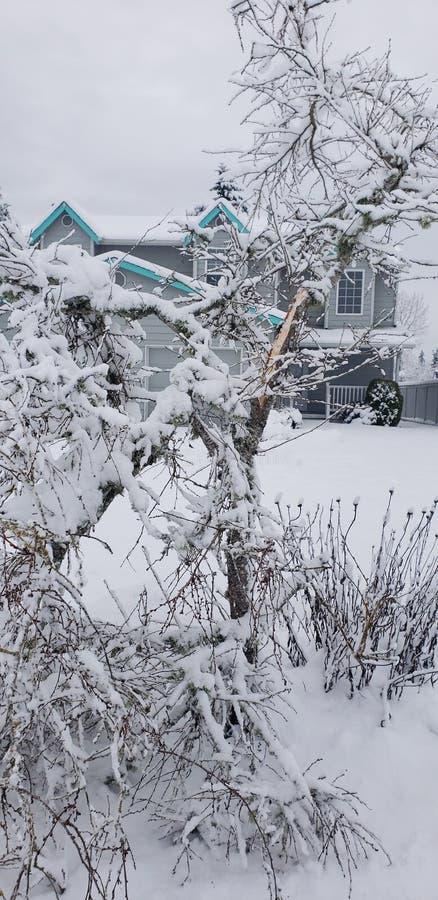 Poids de l'hiver images libres de droits