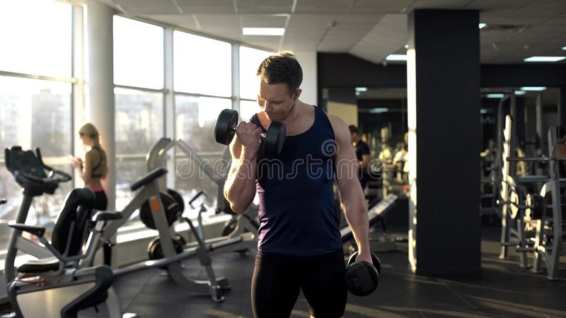 Poids de levage de bodybuilder musculaire, faisant des boucles d'haltère, séance d'entraînement dans le gymnase image stock