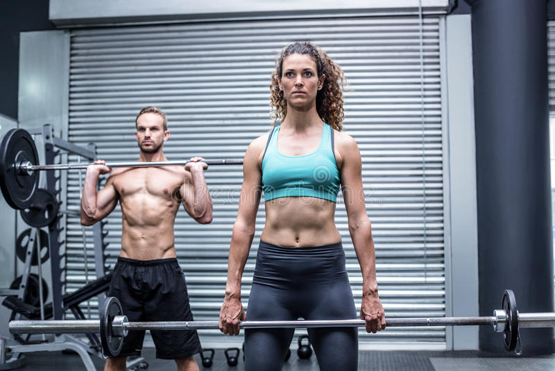 Download Poids De Levage De Couples Musculaires Ensemble Image stock - Image du déterminé, adulte: 56490865