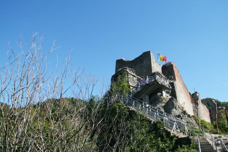 Poienari forteca obraz royalty free