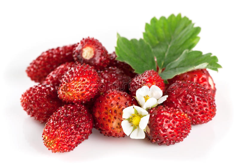Poignée de fraises photographie stock libre de droits