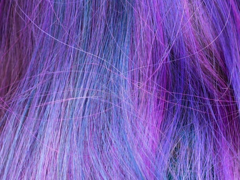 Poils femelles colorés bleus et violed images stock