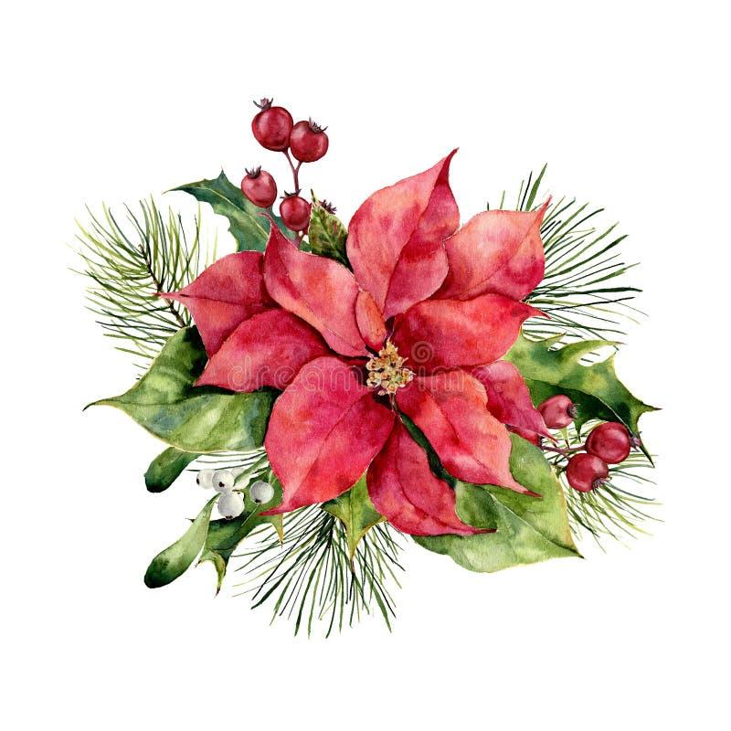 Poinsétia da aquarela com a decoração floral do Natal Flor tradicional pintado à mão e plantas: azevinho, visco, bagas ilustração stock