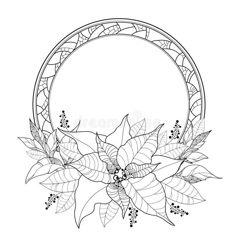 Poinsetia del vector o estrella de la Navidad, hojas y marco redondo adornado aislados en blanco Flor de la poinsetia del esquema ilustración del vector