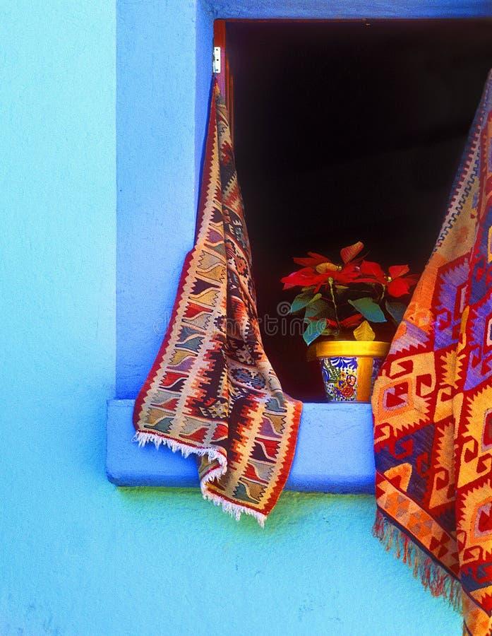 Poinsetta in Open Venster stock fotografie