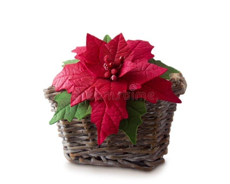 Poinsettia в корзине Handmade foamiran ткани цветка стоковое фото rf