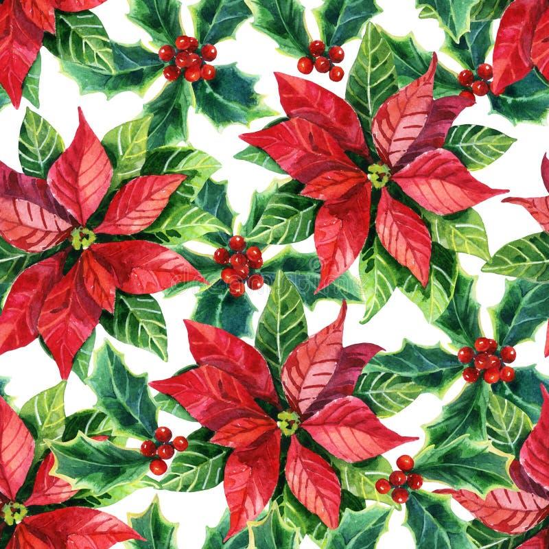 Poinsettia рождества, цветок акварели иллюстрация штока