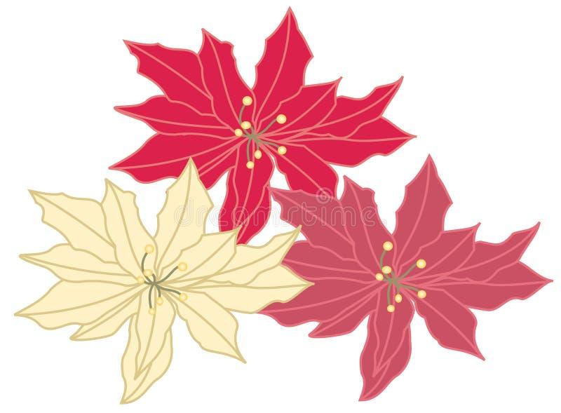 Poinsettia de la Navidad libre illustration