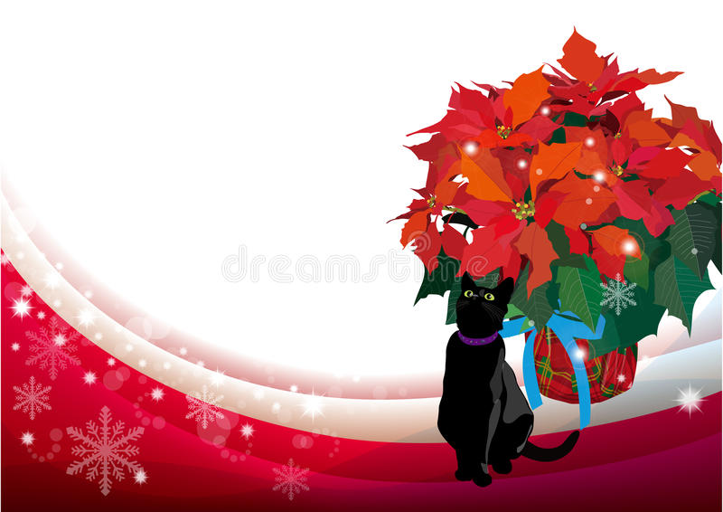 Poinsettia en blackcat stock illustratie