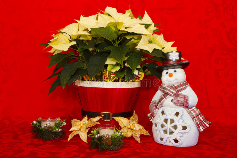Poinsettia in a Red Basket with Candles and Snowman. White Poinsettia in a Red Basket with Candles and Snowman royalty free stock images