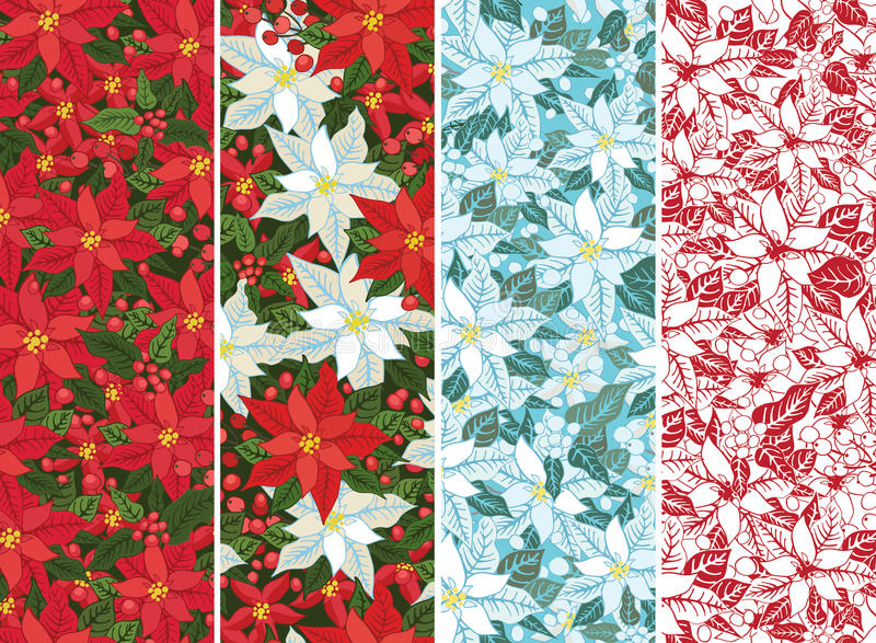 Poinsettia set.Christmas seamless border,banner. Christmas seamless border,banner.Bright background with White and Red poinsettia, holly and mistletoe.Vintage royalty free illustration