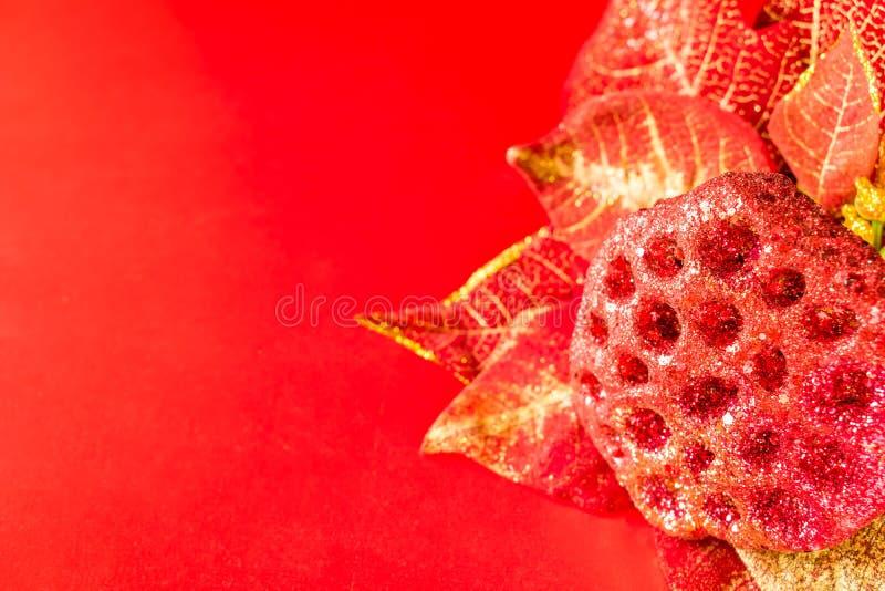 Poinsettia sur le fond rouge photographie stock libre de droits
