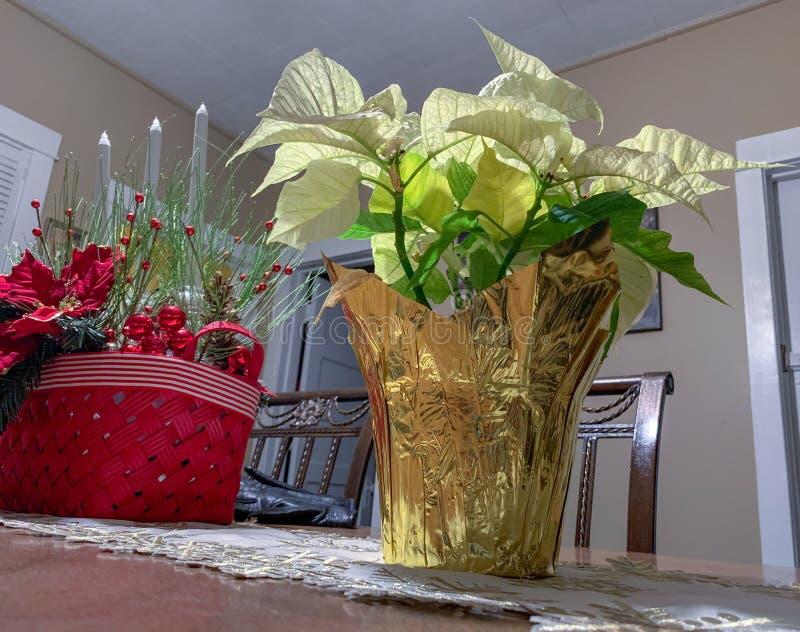 Poinsettiabloemen in vaas op lijst royalty-vrije stock foto's
