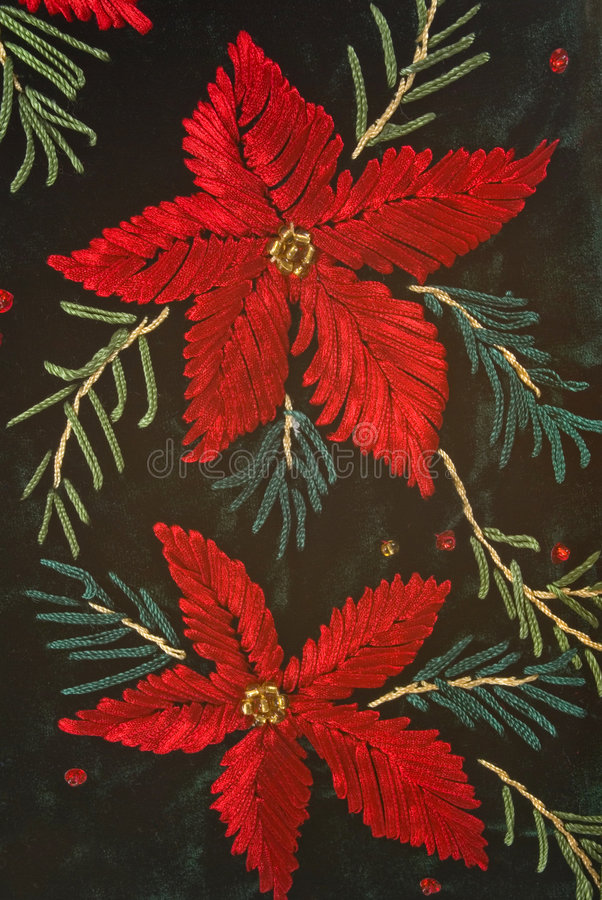 Poinsettias imagem de stock