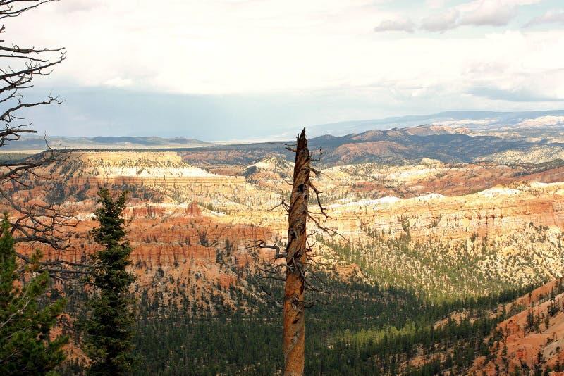 Point de Brice Canyon images libres de droits