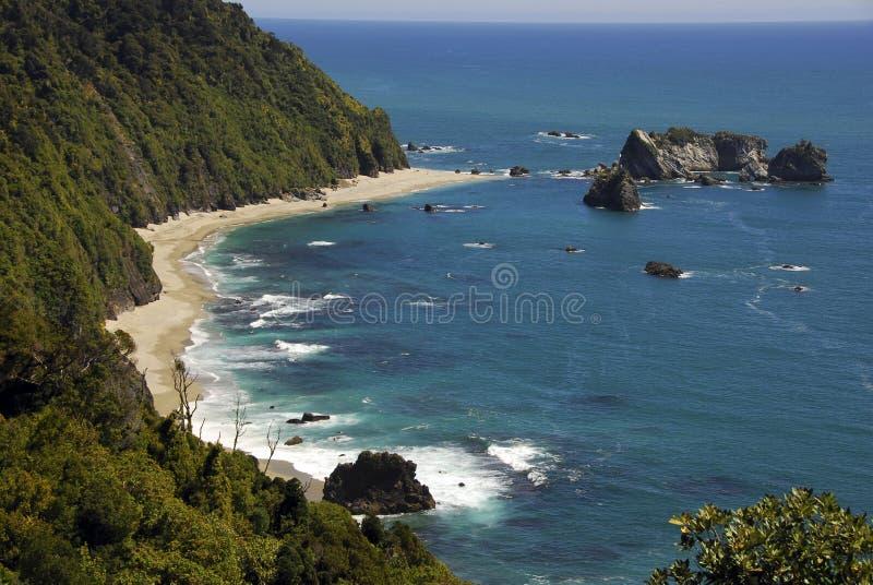 Point de chevaliers - Nouvelle Zélande photo libre de droits