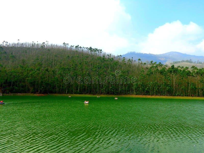 Point de Munnar Eco photos libres de droits