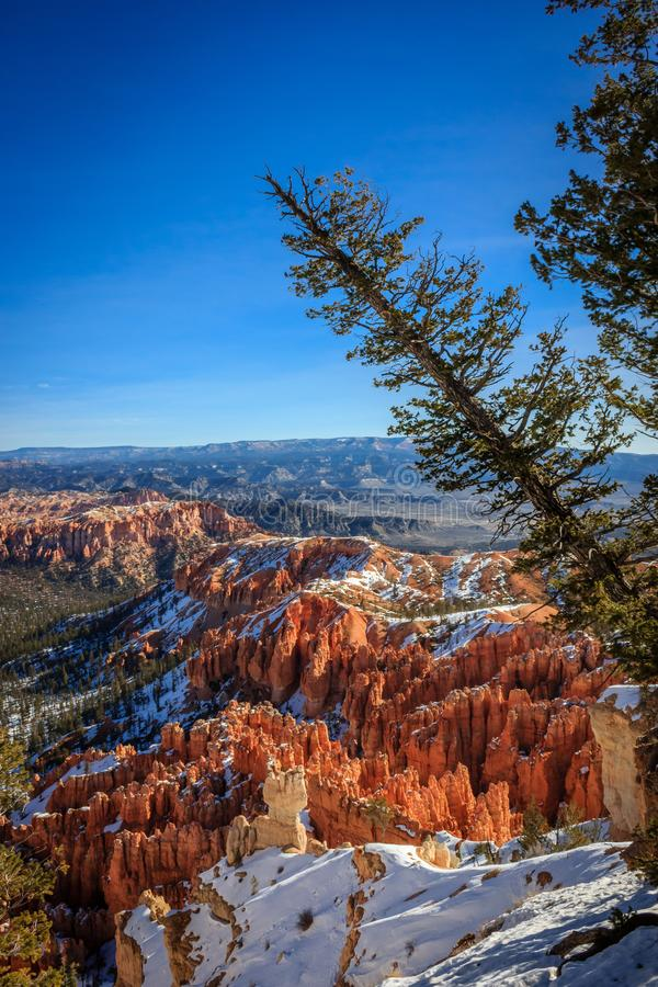 Point de vue de Bryce Canyon photographie stock libre de droits