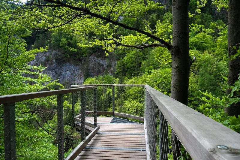 Point de vue, vallée, nature pure, Tatras occidental, Slovaquie images libres de droits