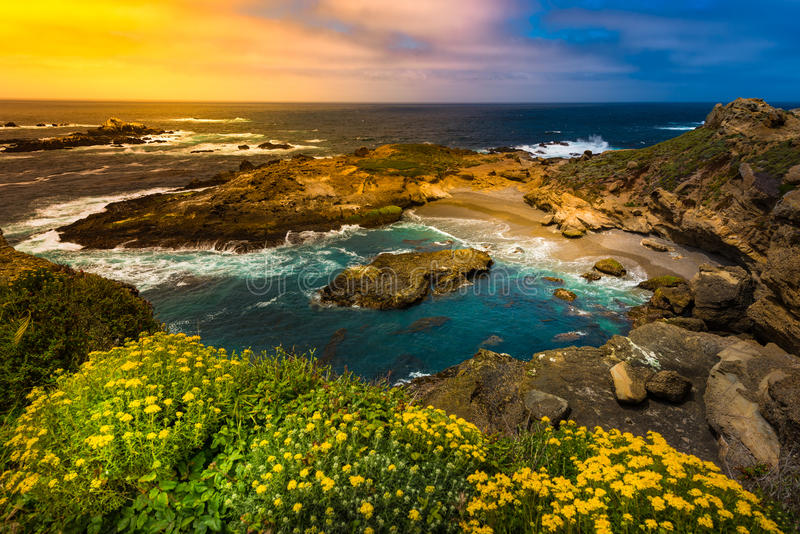 Point Lobos State Park California. Point Lobos Near Sandhill Cove California State Reserve stock images
