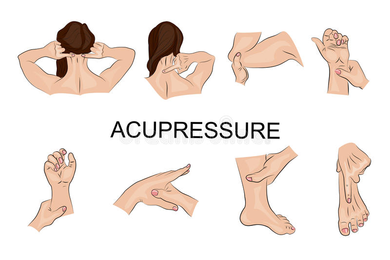 Point massage. Body parts. vector illustration