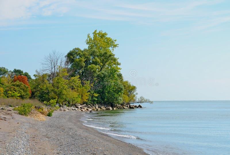 Point Pelee shoreline. Lake Erie shoreline at Point Pelee National Park, Ontario stock photography